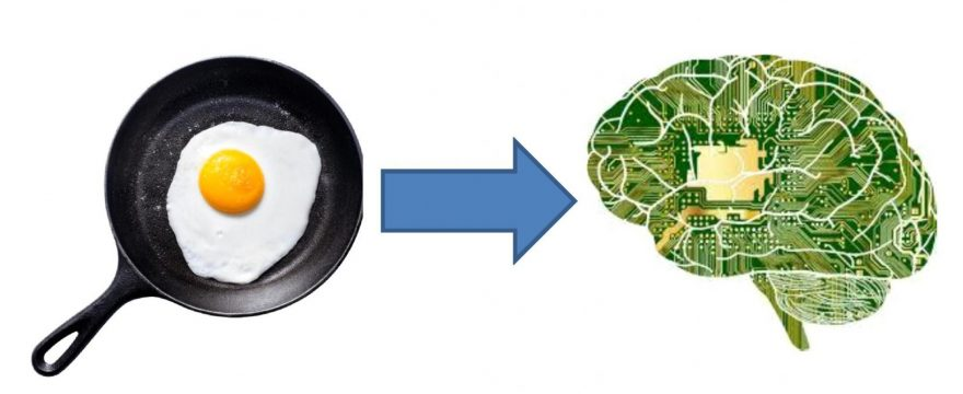 frying pan on left with egg frying in it. Arrow pointing from frying pan to brain that has computer board in it.