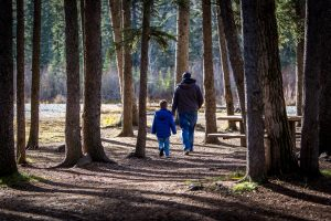 Photo of young boy with man, presumably father, walking together in the woods - from behind.